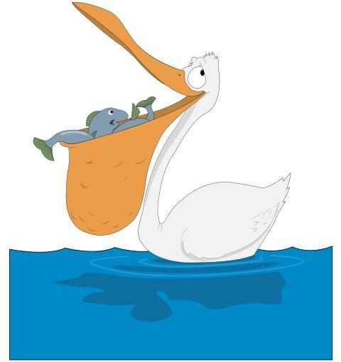pelikan aufkleber