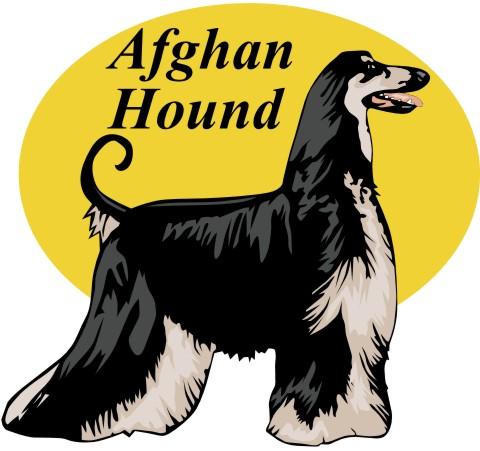 afghane wandtattoo