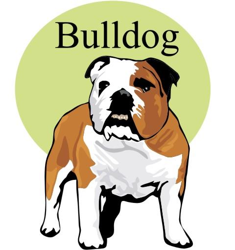 bulldog wandtattoo