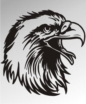 adler aufkleber eagle sticker
