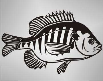 fisch autoaufkleber