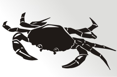 krabbe autoaufkleber