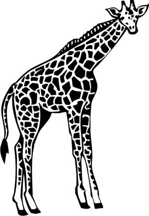 giraffe aufkleber