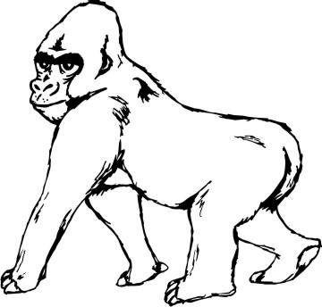 gorilla aufkleber