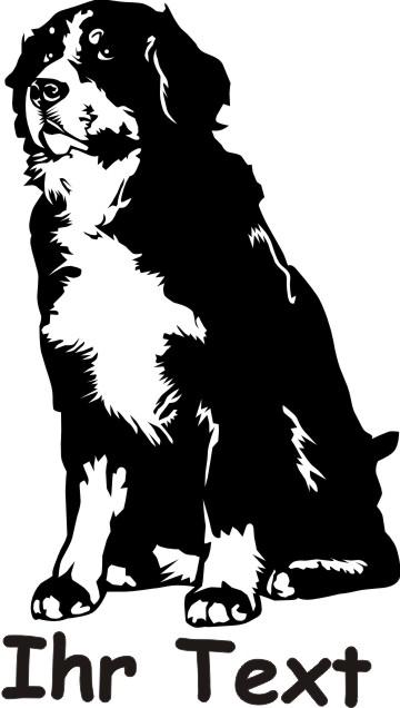 bernese mountain dog 01 DR