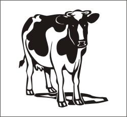 Kuh Aufkleber Kuhaufkleber