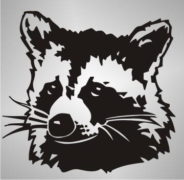 Raccoon Autoaufkleber