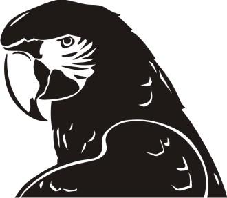 ara macaw aufkleber