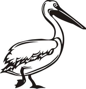 pelican aufkleber